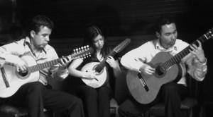 Unico-Trio