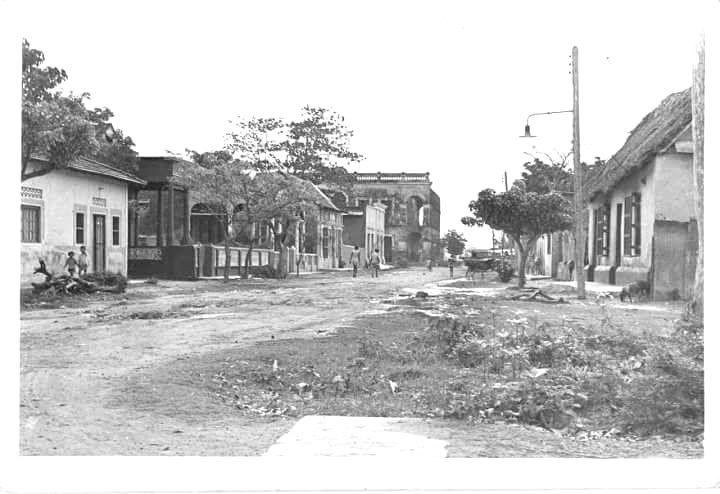 Calamar después de 1950